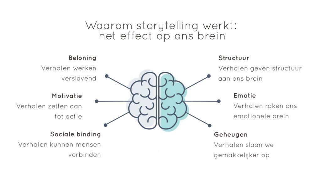 Effect van storytelling op het brein